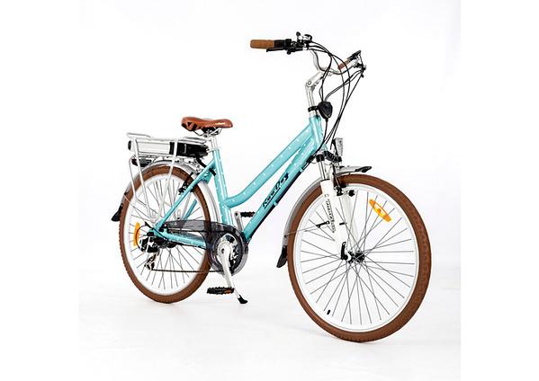 Roodog Electric Bikes Newcastle-under-Lyme
